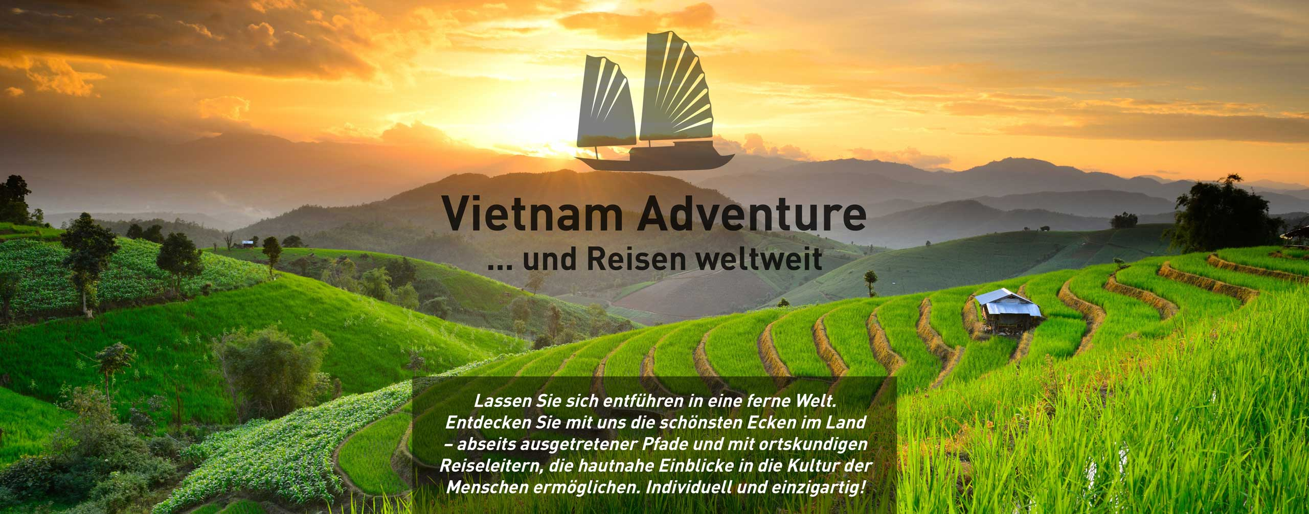 Bild Reisfelder in Vietnam